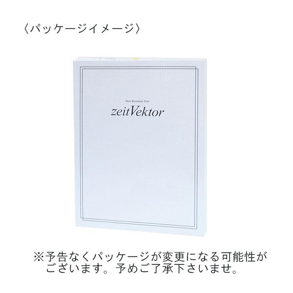 レイメイ藤井 ツァイトベクター クリップファイル A4サイズ