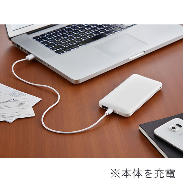 モバイルバッテリー 10000mAh 2台充電対応