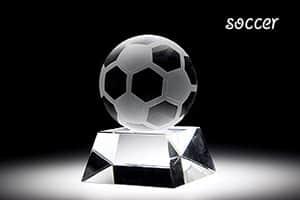 スポーツトロフィーL サッカー